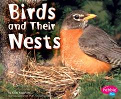 Birds and Their Nests by Linda Tagliaferro